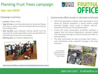 Planting Fruit Trees campaign