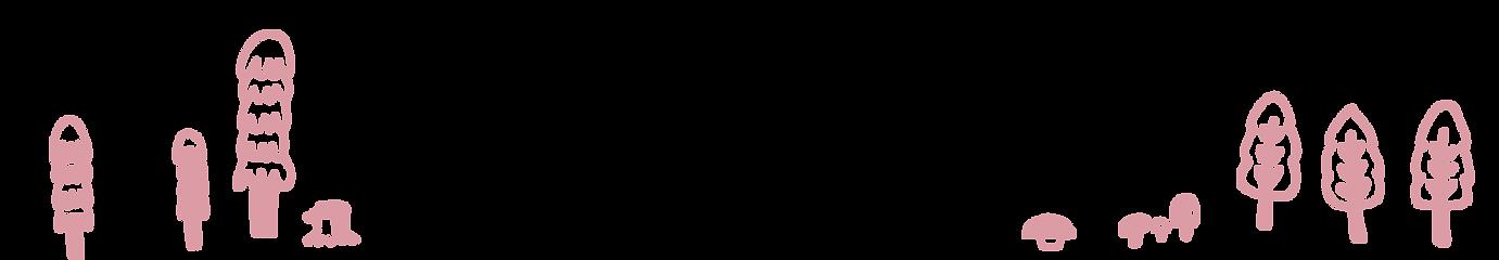 bottom2.png