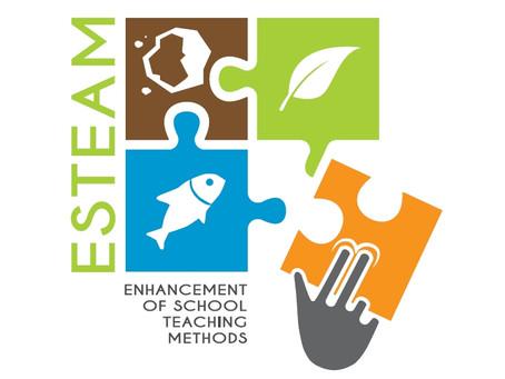 We got an ESTEAM logo!