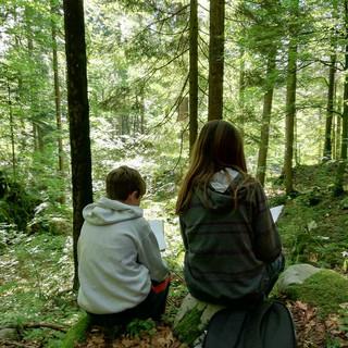 Slovenia 3.jpg