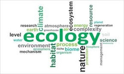 005 Ecology
