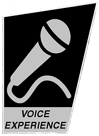 Voice Experience Icon Grey2.png