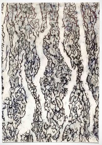 Impronta Corticale 4