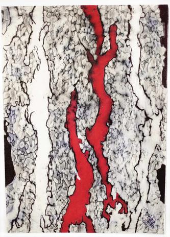 Impronta Corticale 5