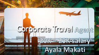 Airline Reservations Agent (25K Package)