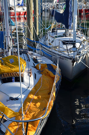Yellow Sail Covers