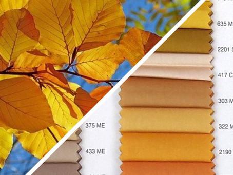 Colori biancheria per la casa:            tendenze autunno – inverno 2021/2022