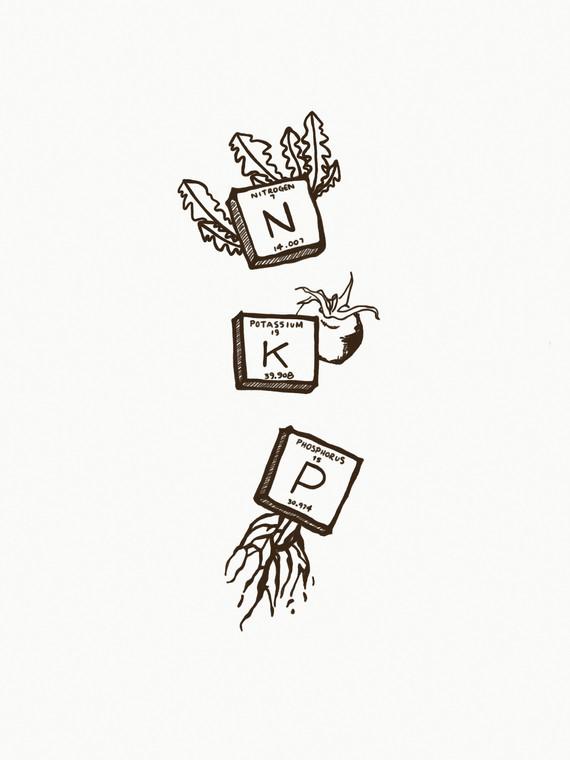 plant nutrients tiles_edited.jpg