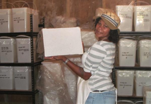 Tavulomo Coconut Product Storage Room