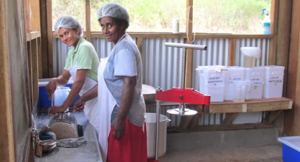 Tavulomo Coconut Batches