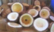 Tavulomo Coconuts Given Away