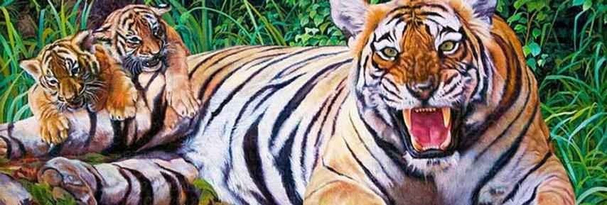 Tiger | Tigre