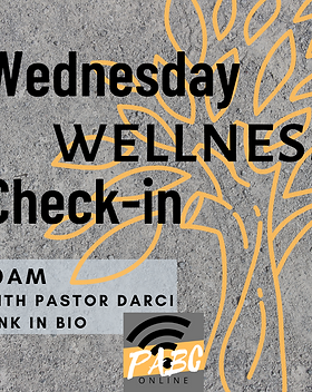 Copy of Wednesday Wellness Check-in.png