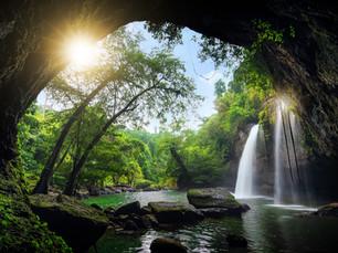 Writing Nature Alive - Retreat Spain