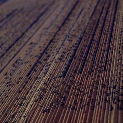 Silvia Japkin - Ways of reading - 15