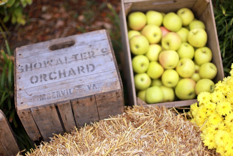 Showalters Orchard