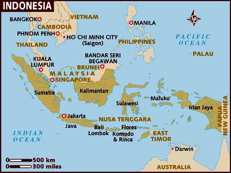 Indonesian Coffee Coming Soon!