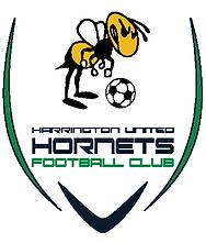 HARRINGTON UNITED HORNETS LOGO.png
