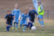 Appin Girls MiniRoos 18.png