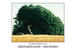 Texas Naturally
