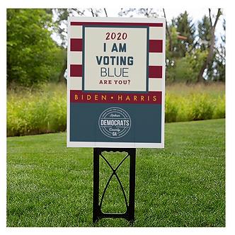 RCD 2020 Election Yard Sign
