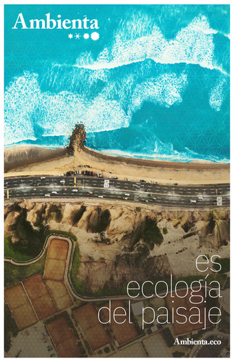 posters ambienta tabloide-ecologia paisa