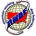 AWDF Logo.jpeg