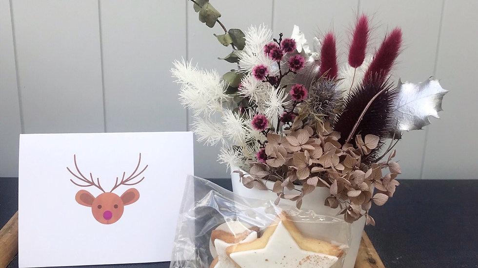 Mini Christmas tree pot 1 - gift pack