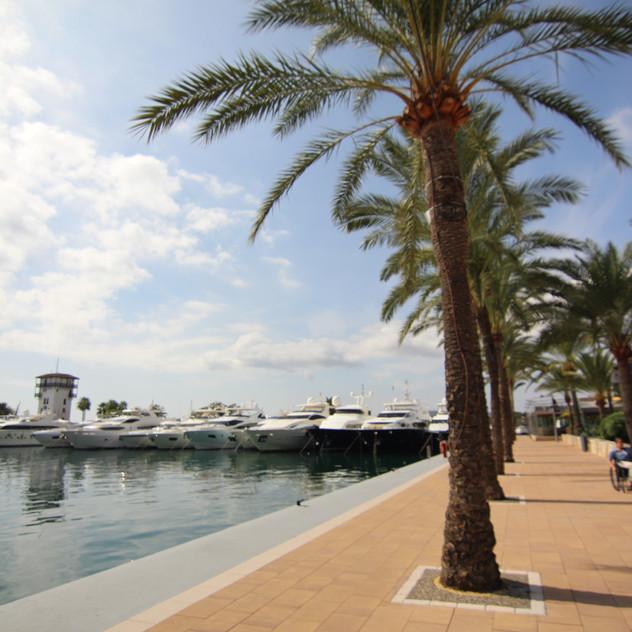 OD Port Portals Mallorca31