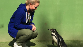 Castellar Zoo - Animal Rescue Centre