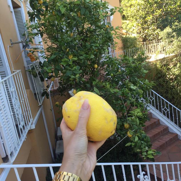 Great Gatsby Villa Marbella10