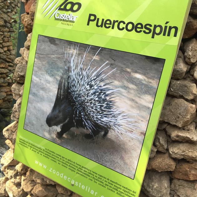 Marbella Zoo17