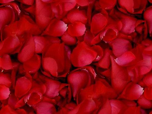 Bag of Red Rose Petals / Confetti Corazones Rojos