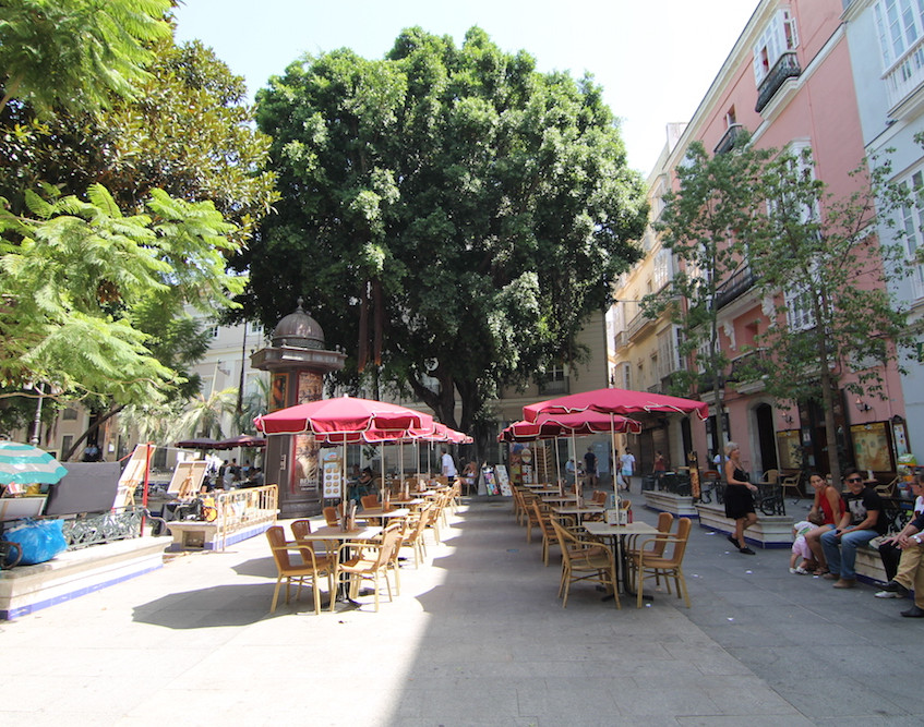 What to do in Cadiz55