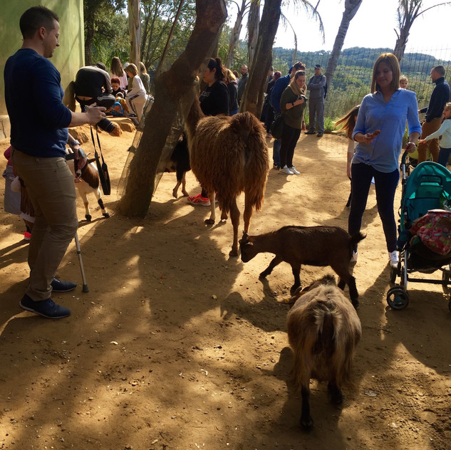 Castellar Zoo20