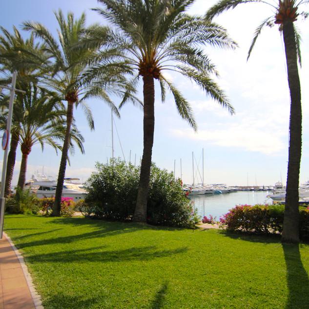 OD Port Portals Mallorca34