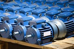 Motor and Generator Overhaul