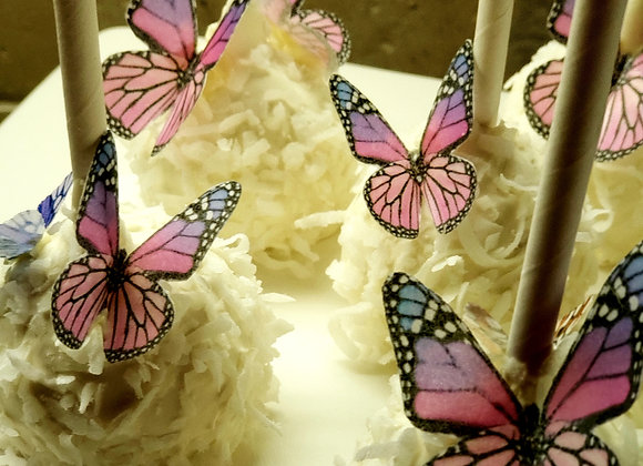 Cake Pop-Tropical-Butterfly Garden-Coconut-6pk