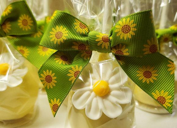Cake Pop-Lemon Zest-Daisy Pop-6pk