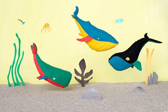 sperm whale, blue whale, right whale (KA