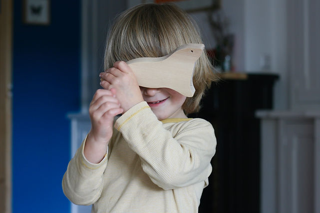 natural wooden toys, duurzaam houten speelgoed, organic toys, sustainable wooden toys, designer toy