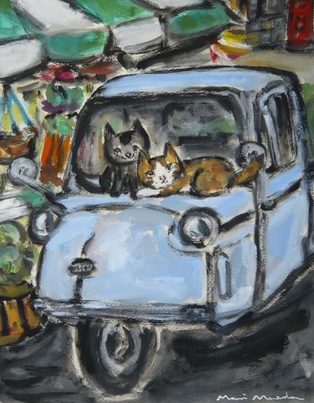 ミゼットと猫