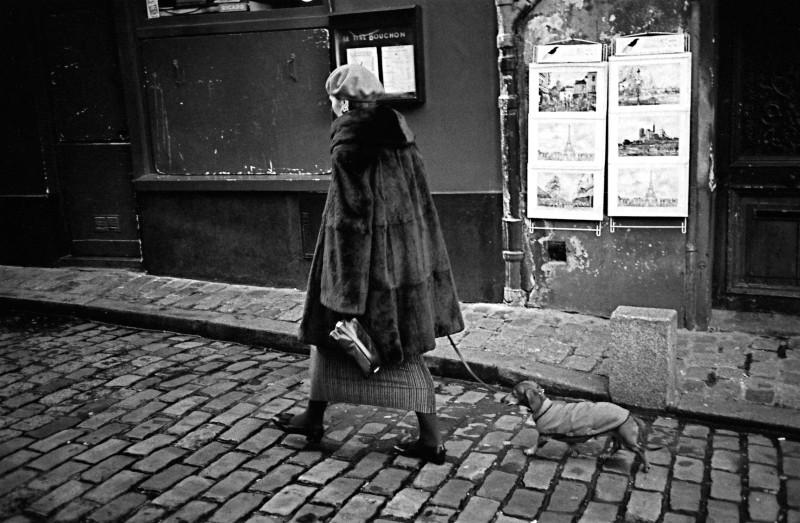 仔犬を連れたマダム (パリ)