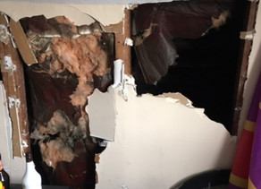 Common Property Maintenance Issues