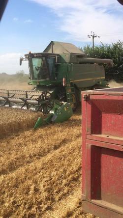 Harvest 2016