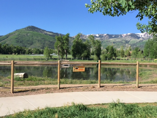 Willow Creek Dog Park/ Park City Pe