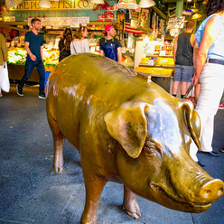 Rachel the Pig in Pike Place Market