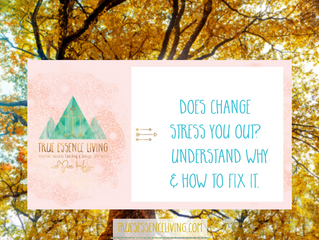Does change stress you out? Understand why & how to fix it.
