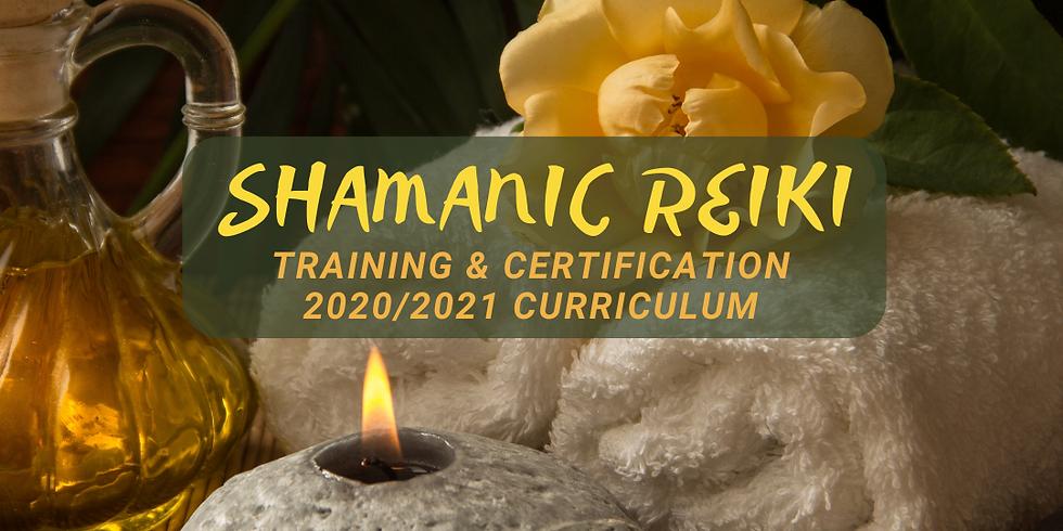 Shamanic Reiki 2020/2021 - February Class