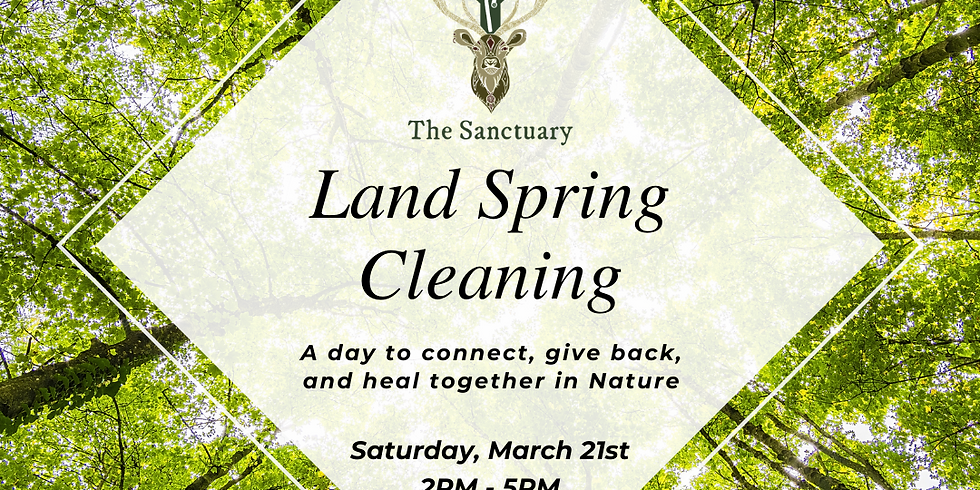 Land Spring Cleaning with free immune booster tea!